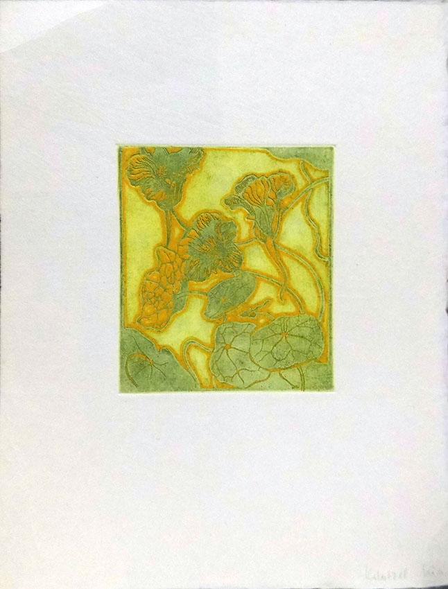 Arthur Illies Nachlass 'Nasturtiums' Radierung 1896 26 × 33 cm Motiv 12,5 × 14 cm