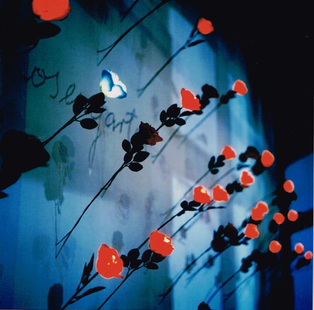 Nachtansicht, Mercer Union – Center for Contempoary Art, Toronto (Ca) 1998